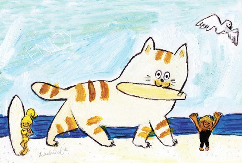 catsurf